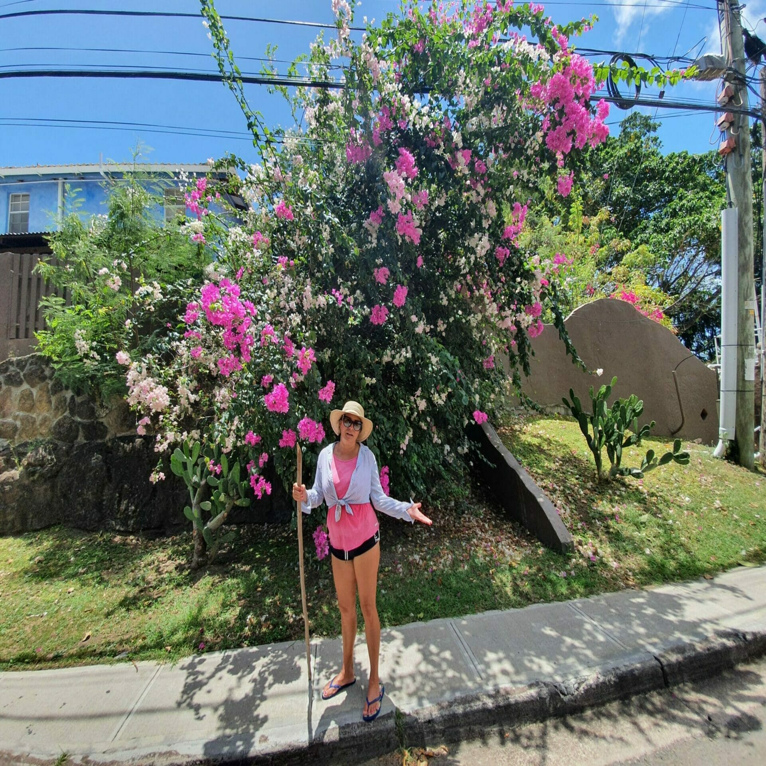 Hector - Rosy und Blumen